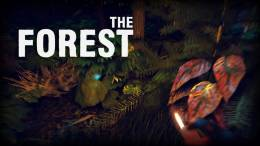 The Forest is Exiting Steam Early Access April 30th